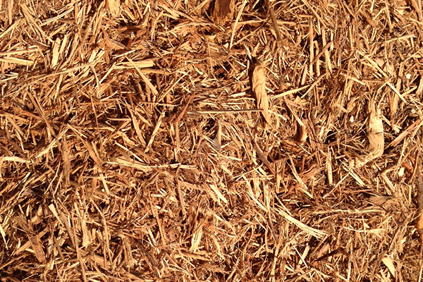 The Wonders of Cedar Mulch