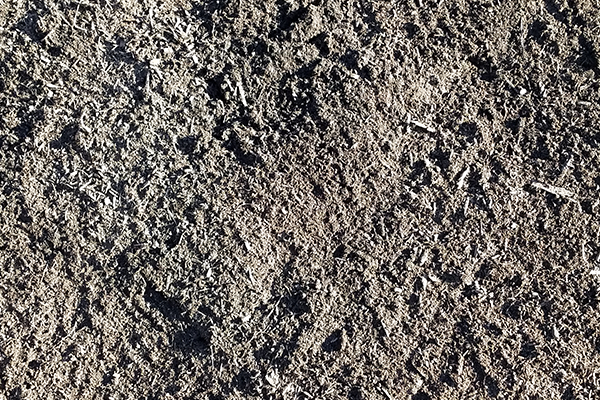 Topsoil or Compost: Which do you need?