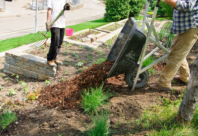 Fall Landscaping Tips and Tricks